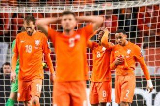 Oranje is een gewond en gevaarlijk dier
